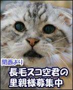 sorakunnbana- 1のコピー
