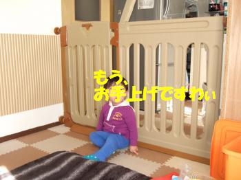 DSCF3983_convert.jpg
