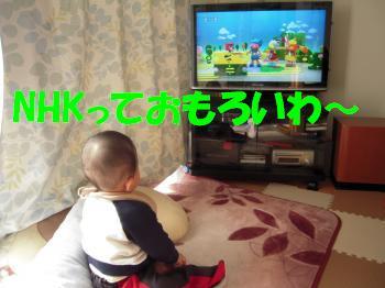 DSCN1240_convert_20100205230102.jpg