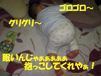 DSCN1309_convert.jpg
