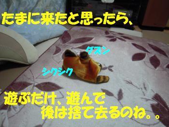 DSCN1318_convert.jpg