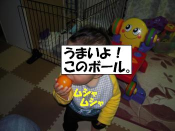 DSCN1578_convert.jpg