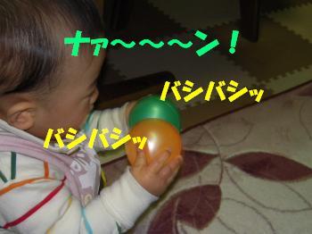 RSCN1312_convert.jpg