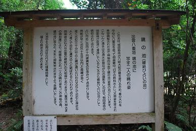 yaegaki002.jpg