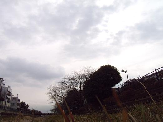 110208-1.jpg