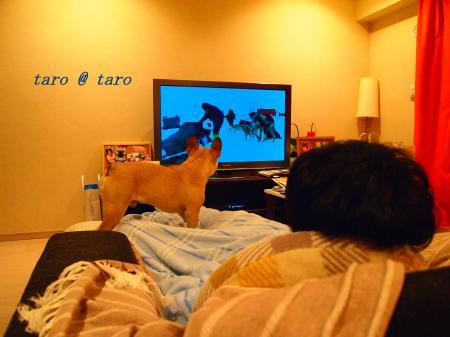 タロー物語6
