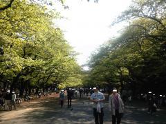 上野公園風景
