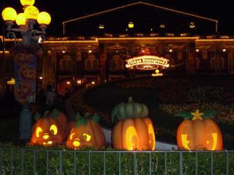 ランドかぼちゃ