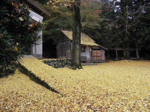 諸杉神社にて