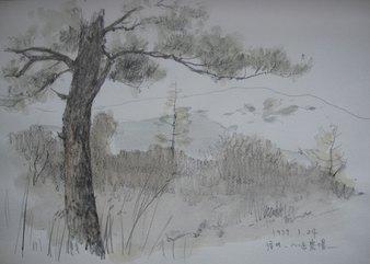 信州・八ヶ岳農場(1979・1)