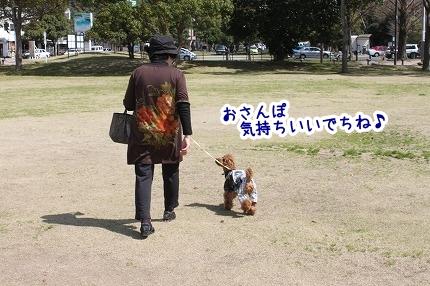 IMG_0172_20120324215252.jpg