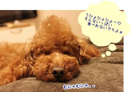 IMG_0203_20120226211345.jpg