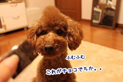 IMG_0222_20120214214918.jpg