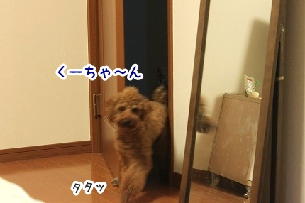 IMG_1102.jpg