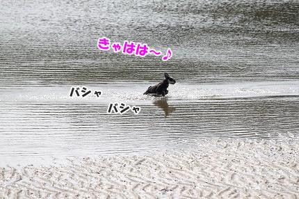 IMG_1652.jpg