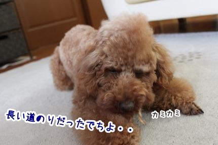 IMG_9888.jpg
