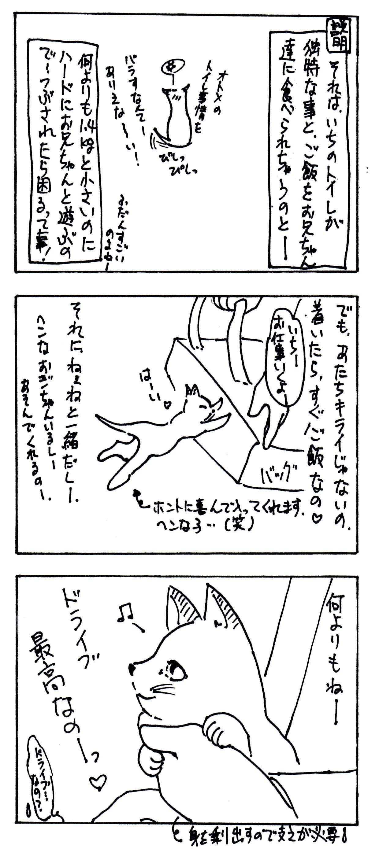 101024-3.jpg