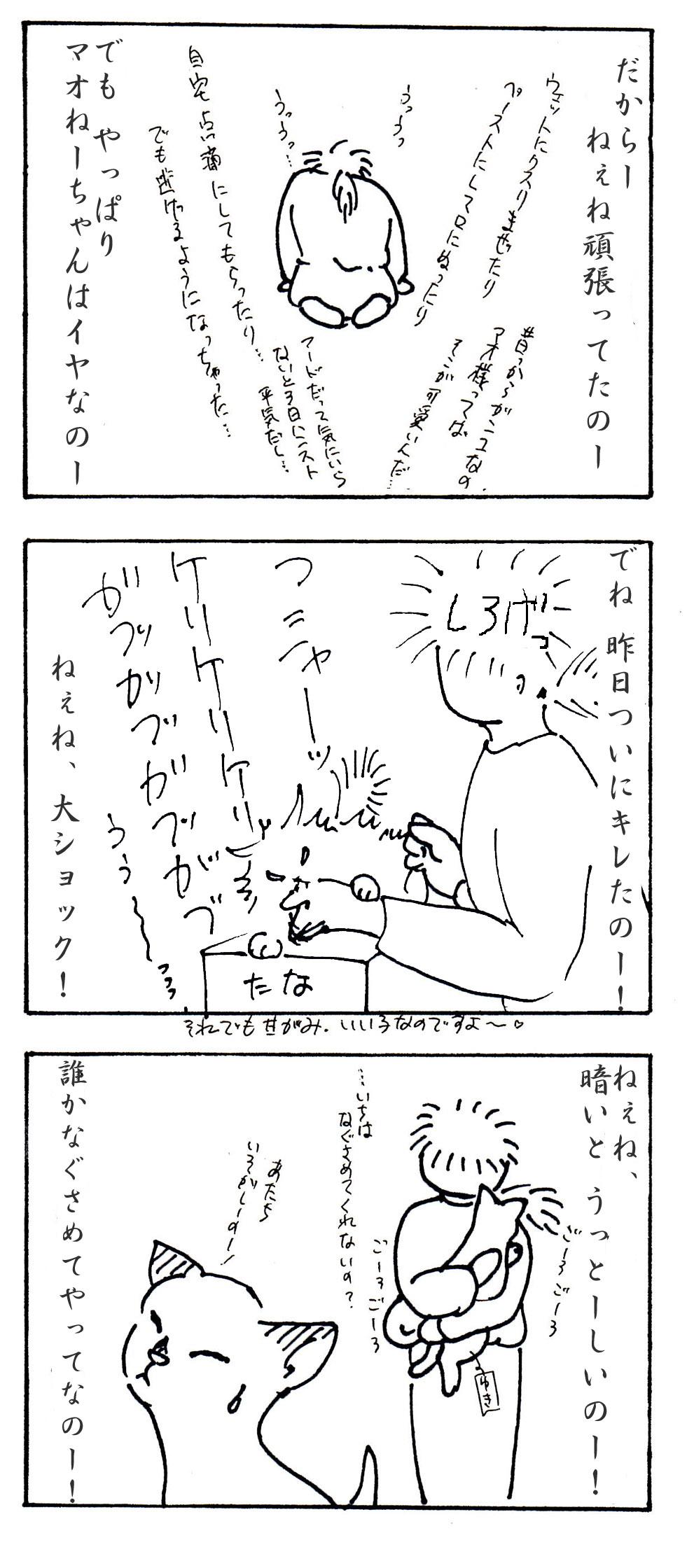 101028-2.jpg