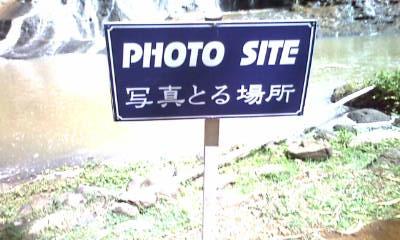 撮る場所。