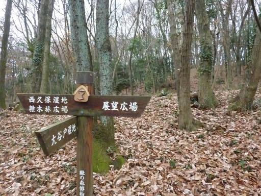 20101219・奥狭山湖03