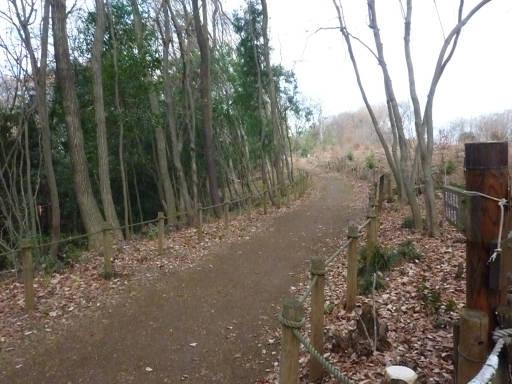 20101219・奥狭山湖12