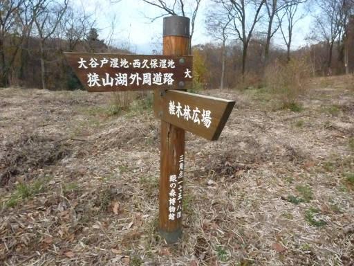 20101219・奥狭山湖09