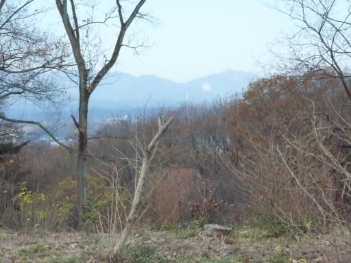 20101219・奥狭山湖08