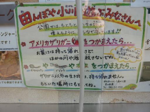 20101219・里山05