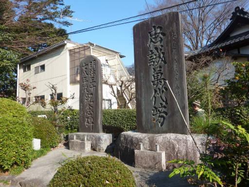 20101219・里山13