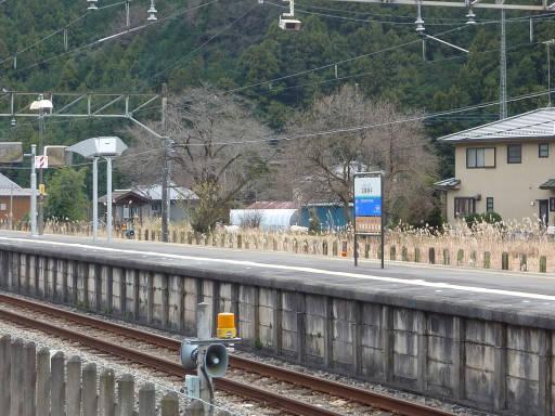 20100101・武蔵横手11