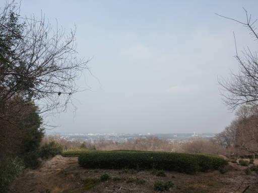 20110206・空2・自然観察