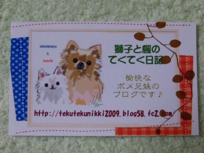 IMG_6790_convert_20101113203225.jpg