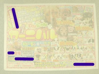 snap_tekutekunikki2009_201123201214.jpg