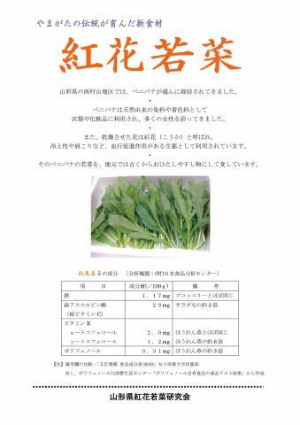 221004紅花若菜チラシ(分析