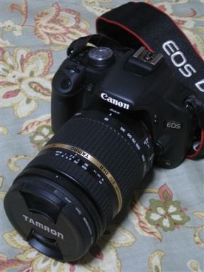 CAJI45V5_convert_20091225221255.jpg