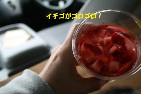 2009120738.jpg