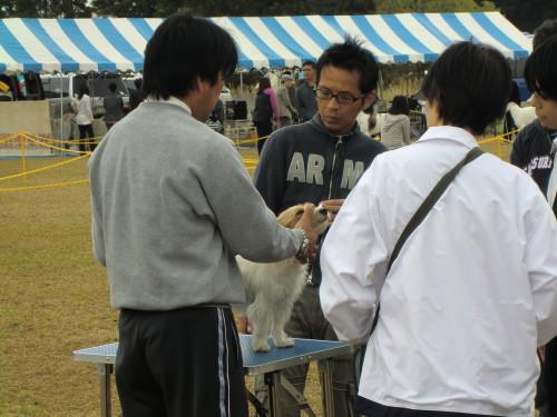2011052206.jpg