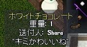 WS001070.JPG