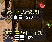WS001140.JPG