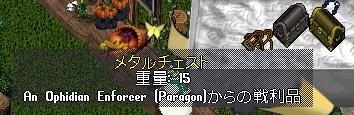 WS001289.JPG
