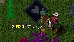 WS001718.JPG