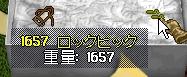 WS001827.JPG