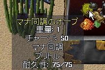 WS002354.JPG
