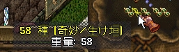 WS002744.JPG