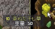 WS003085.JPG