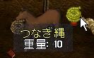 WS003138.JPG