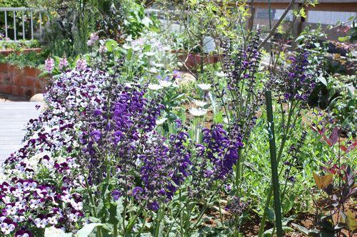 T's Garden Healing Flowers‐k邸庭