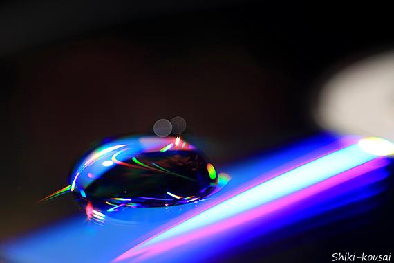 光の水玉・カエル