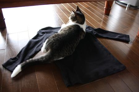 部屋とTシャツとアタシ