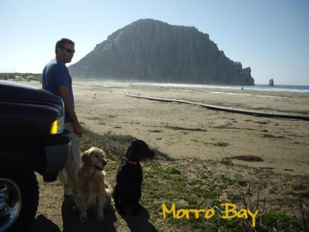 1.CA-OR-WA Morro Bay